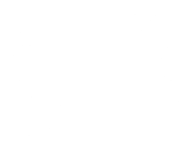 Bright Light Film Festial - Official Selection 2009